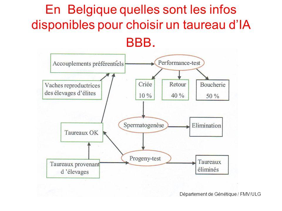 En Belgique quelles sont les infos disponibles pour choisir un taureau dIA BBB.