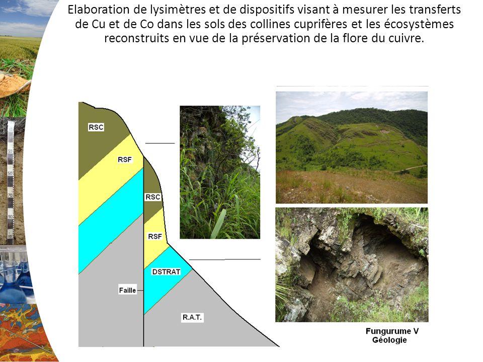 Elaboration de lysimètres et de dispositifs visant à mesurer les transferts de Cu et de Co dans les sols des collines cuprifères et les écosystèmes reconstruits en vue de la préservation de la flore du cuivre.