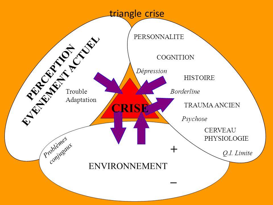 CRISE PERCEPTION EVENEMENT ACTUEL PERSONNALITE COGNITION HISTOIRE TRAUMA ANCIEN CERVEAU PHYSIOLOGIE ENVIRONNEMENT + _ Problèmes conjugaux Dépression Borderline Psychose Q.I.