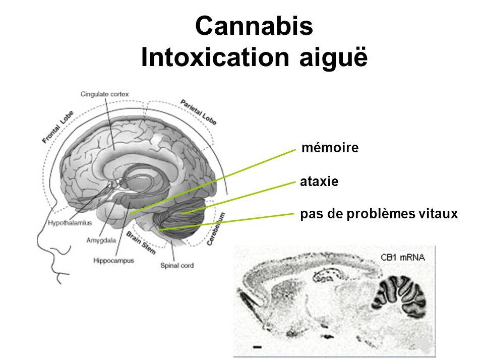 mémoire ataxie pas de problèmes vitaux Cannabis Intoxication aiguë