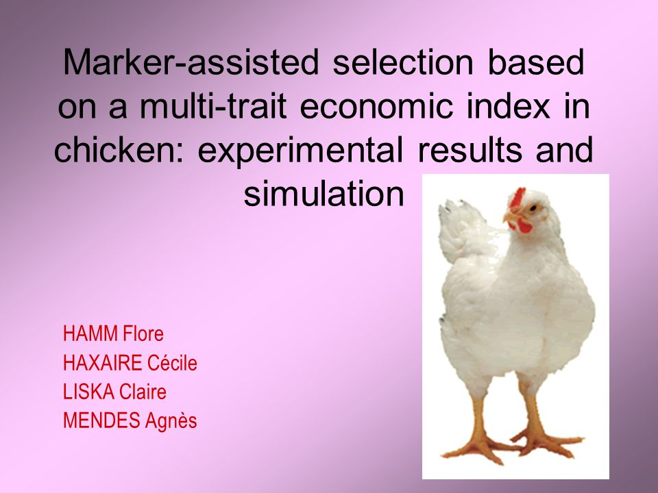 Marker-assisted selection based on a multi-trait economic index in chicken: experimental results and simulation HAMM Flore HAXAIRE Cécile LISKA Claire MENDES Agnès