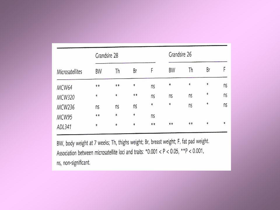 DONC: La sélection dindividus sur base de leur phénotype diffère peu de la sélection grâce à EI-MAS.