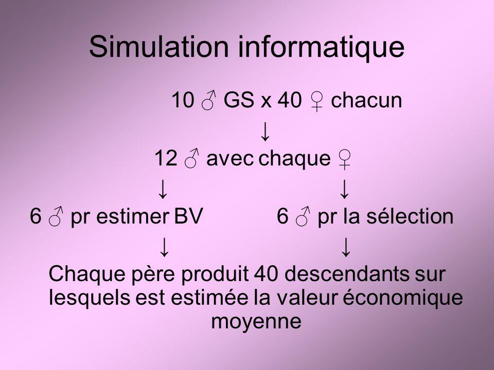Simulation informatique 10 GS x 40 chacun 12 avec chaque 6 pr estimer BV6 pr la sélection Chaque père produit 40 descendants sur lesquels est estimée la valeur économique moyenne