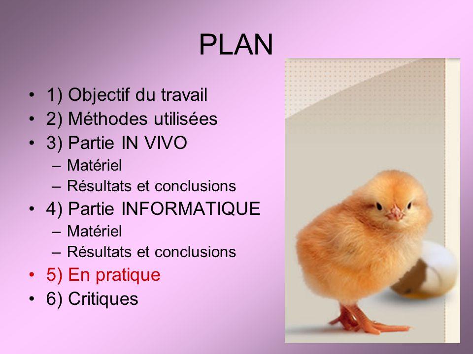 PLAN 1) Objectif du travail 2) Méthodes utilisées 3) Partie IN VIVO –Matériel –Résultats et conclusions 4) Partie INFORMATIQUE –Matériel –Résultats et
