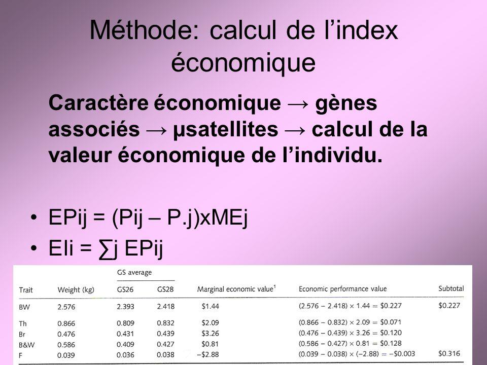 Méthode: calcul de lindex économique Caractère économique gènes associés µsatellites calcul de la valeur économique de lindividu. EPij = (Pij – P.j)xM