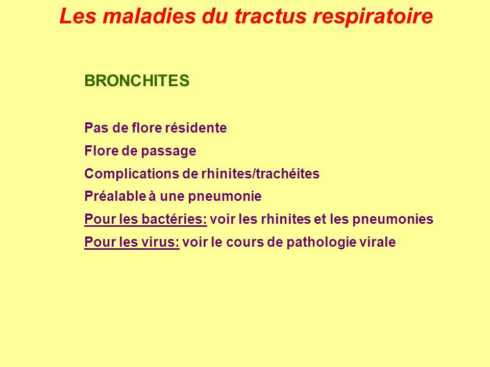 Les maladies du tractus respiratoire BRONCHITES Pas de flore résidente Flore de passage Complications de rhinites/trachéites Préalable à une pneumonie