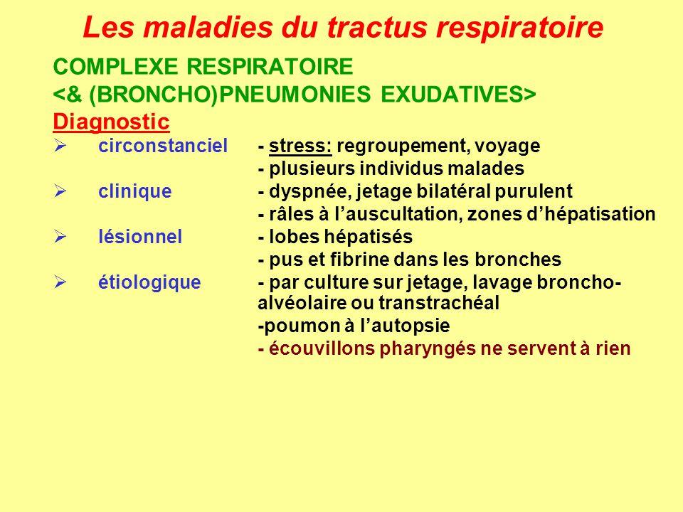 Les maladies du tractus respiratoire COMPLEXE RESPIRATOIRE Diagnostic circonstanciel- stress: regroupement, voyage - plusieurs individus malades clini