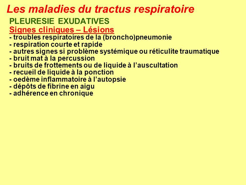 Les maladies du tractus respiratoire PLEURESIE EXUDATIVES Signes cliniques – Lésions - troubles respiratoires de la (broncho)pneumonie - respiration c