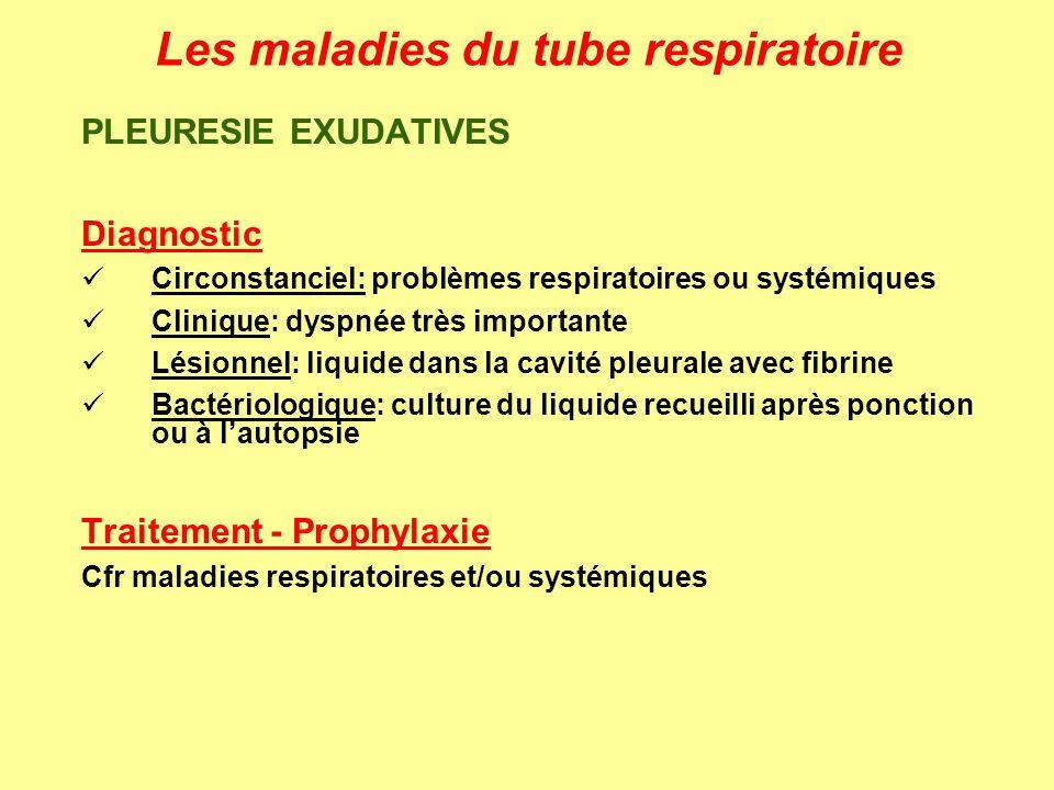 Les maladies du tube respiratoire PLEURESIE EXUDATIVES Diagnostic Circonstanciel: problèmes respiratoires ou systémiques Clinique: dyspnée très import