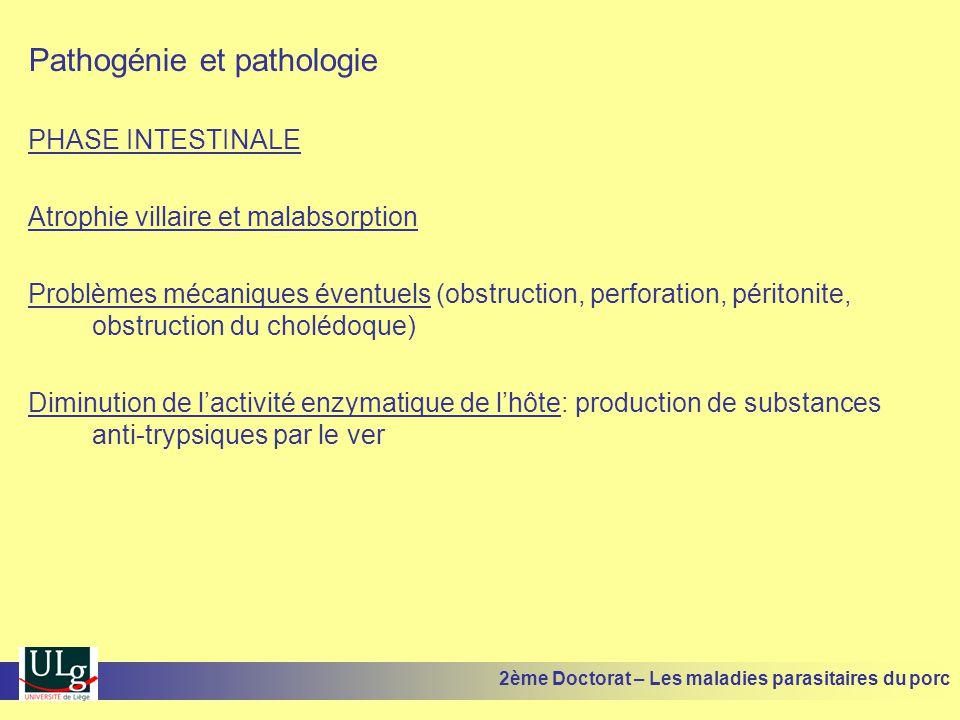 Pathogénie et pathologie PHASE INTESTINALE Atrophie villaire et malabsorption Problèmes mécaniques éventuels (obstruction, perforation, péritonite, ob
