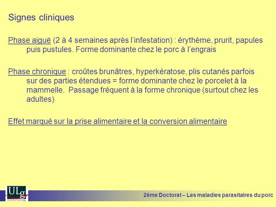 Signes cliniques Phase aiguë (2 à 4 semaines après linfestation) : érythème, prurit, papules puis pustules. Forme dominante chez le porc à lengrais Ph