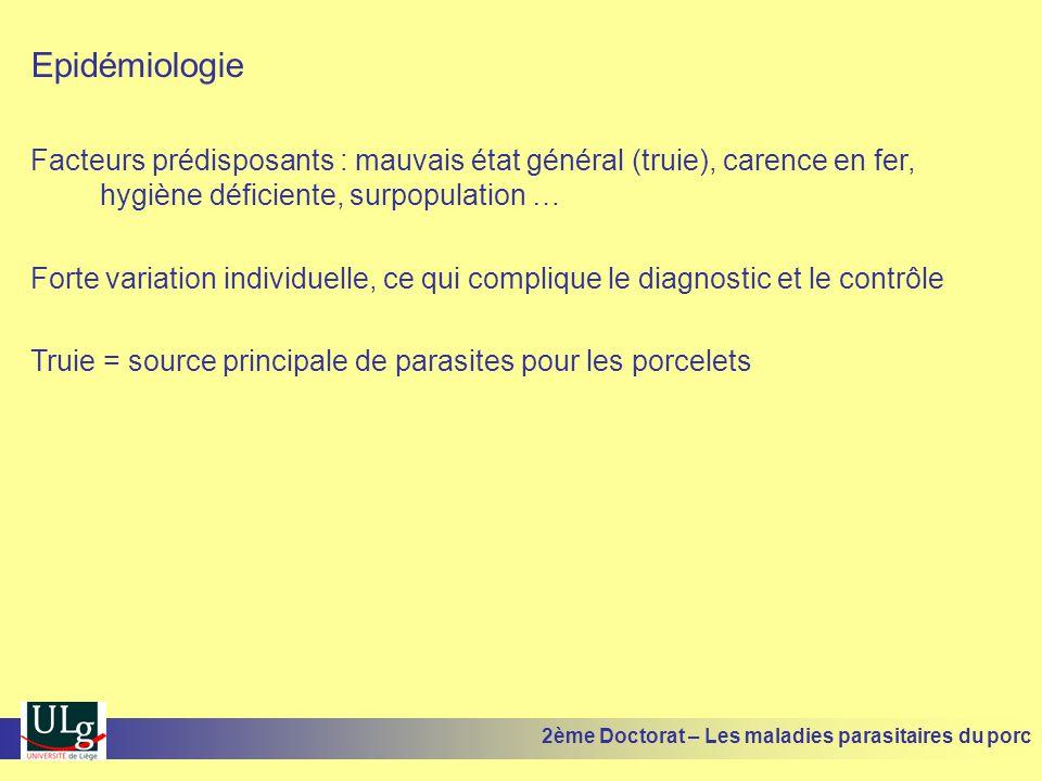Epidémiologie Facteurs prédisposants : mauvais état général (truie), carence en fer, hygiène déficiente, surpopulation … Forte variation individuelle,