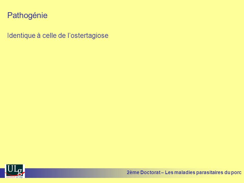 Pathogénie et pathologie PHASE MIGRATOIRE Lésions pulmonaires : Alvéolite séro-hémorragique Rôle inoculateur important: pneumonie enzootique et autres germes 2ème Doctorat – Les maladies parasitaires du porc