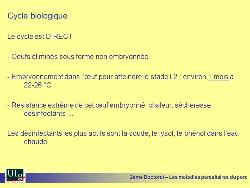 Cycle biologique Le cycle est DIRECT - Oeufs éliminés sous forme non embryonnée - Embryonnement dans lœuf pour atteindre le stade L2 ; environ 1 mois