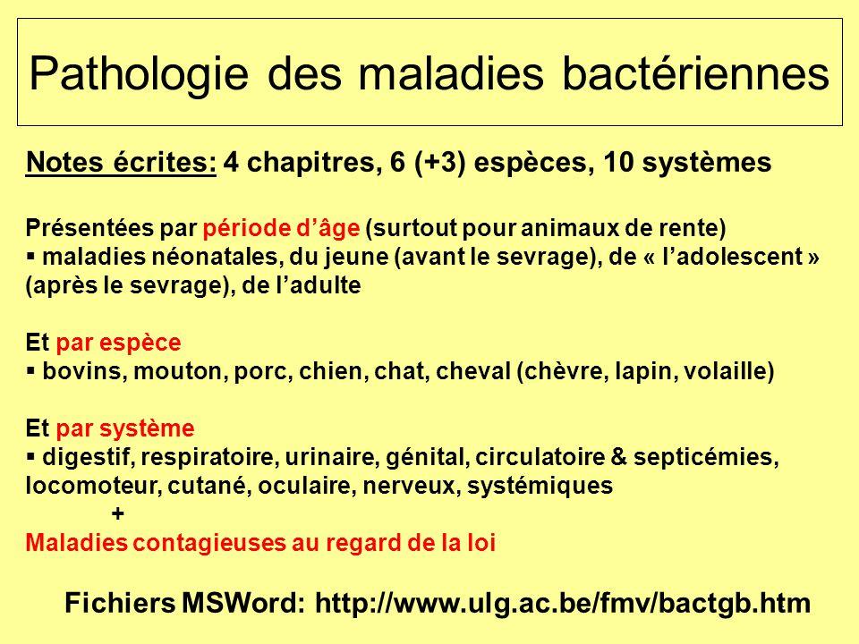 1 Pathologie des maladies bactériennes Notes écrites: 4 chapitres, 6 (+3) espèces, 10 systèmes Présentées par période dâge (surtout pour animaux de re