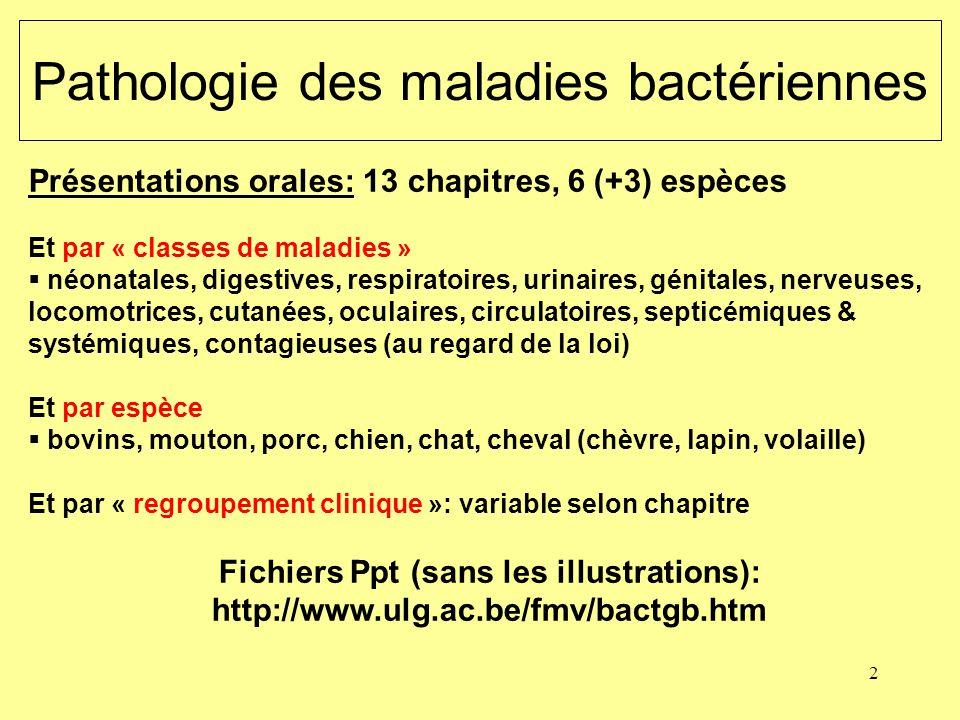 2 Pathologie des maladies bactériennes Présentations orales: 13 chapitres, 6 (+3) espèces Et par « classes de maladies » néonatales, digestives, respi