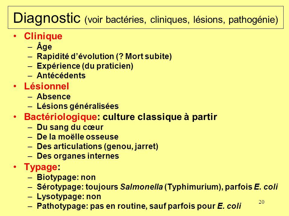 20 Diagnostic (voir bactéries, cliniques, lésions, pathogénie) Clinique –Âge –Rapidité dévolution (? Mort subite) –Expérience (du praticien) –Antécéde