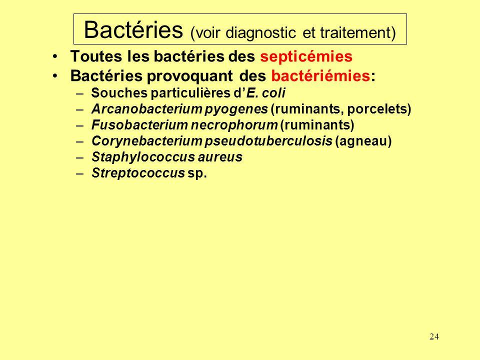 24 Bactéries (voir diagnostic et traitement) Toutes les bactéries des septicémies Bactéries provoquant des bactériémies: –Souches particulières dE. co