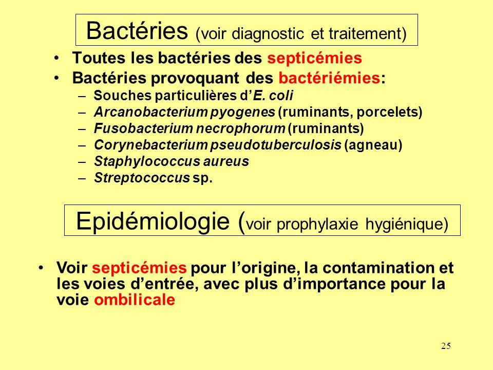 25 Bactéries (voir diagnostic et traitement) Epidémiologie ( voir prophylaxie hygiénique) Voir septicémies pour lorigine, la contamination et les voie