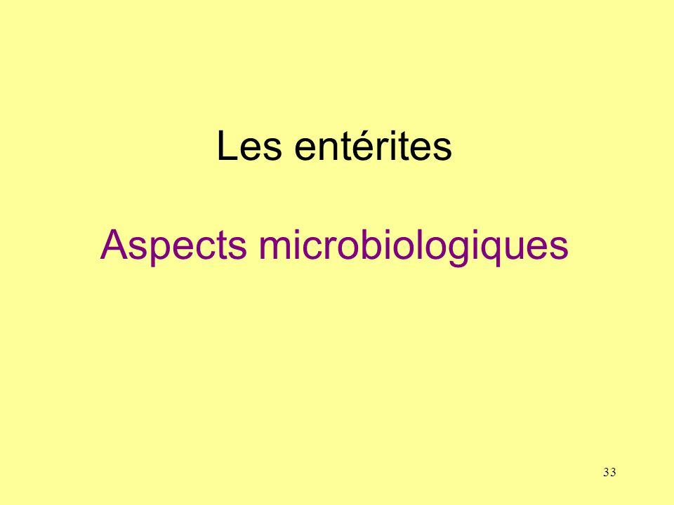 33 Les entérites Aspects microbiologiques