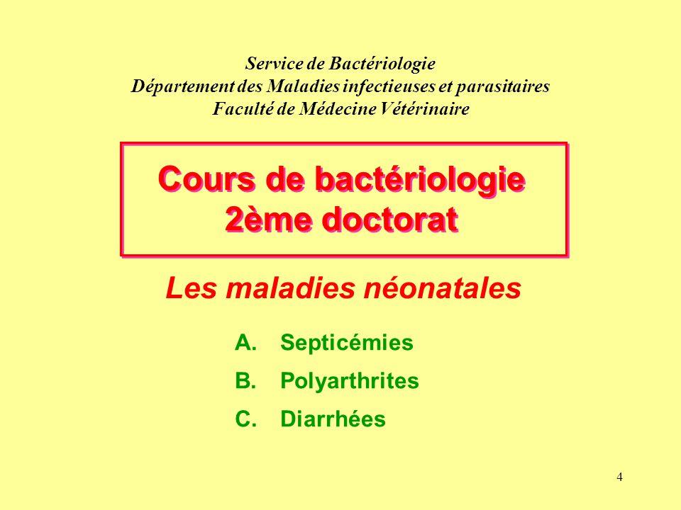 4 Service de Bactériologie Département des Maladies infectieuses et parasitaires Faculté de Médecine Vétérinaire Les maladies néonatales Cours de bact