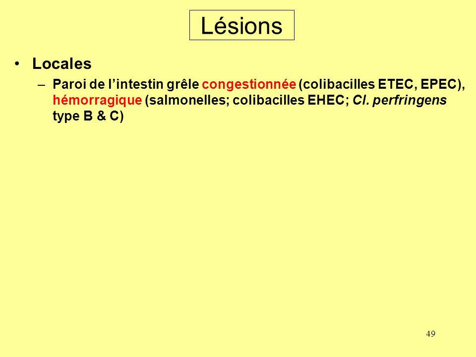 49 Lésions Locales –Paroi de lintestin grêle congestionnée (colibacilles ETEC, EPEC), hémorragique (salmonelles; colibacilles EHEC; Cl. perfringens ty