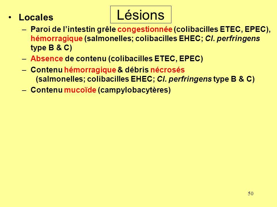 50 Lésions Locales –Paroi de lintestin grêle congestionnée (colibacilles ETEC, EPEC), hémorragique (salmonelles; colibacilles EHEC; Cl. perfringens ty