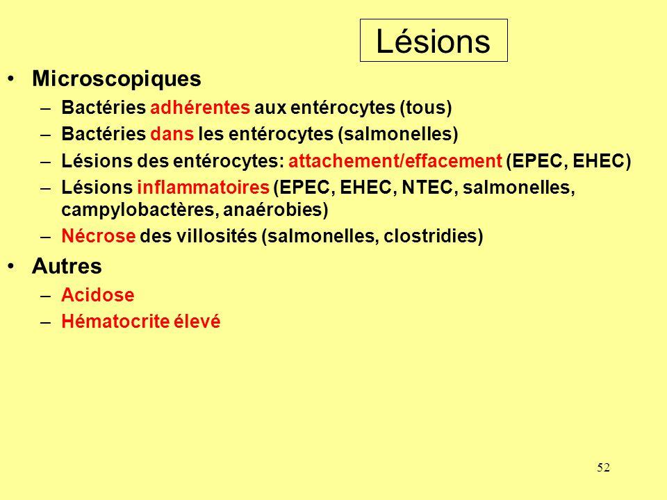 52 Lésions Microscopiques –Bactéries adhérentes aux entérocytes (tous) –Bactéries dans les entérocytes (salmonelles) –Lésions des entérocytes: attache