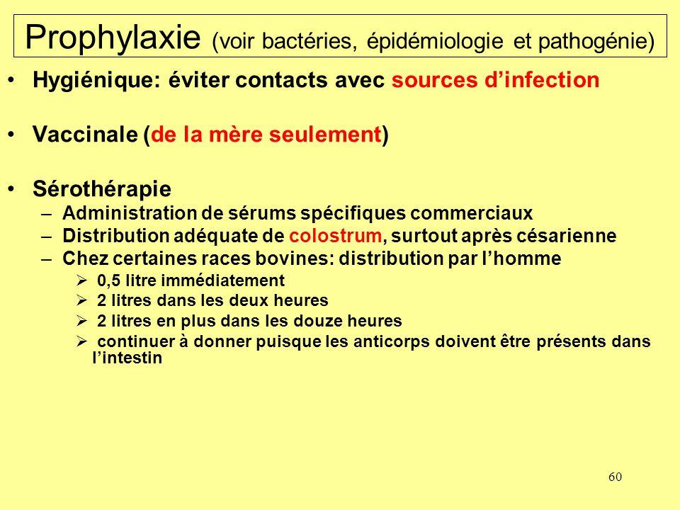 60 Prophylaxie (voir bactéries, épidémiologie et pathogénie) Hygiénique: éviter contacts avec sources dinfection Vaccinale (de la mère seulement) Séro