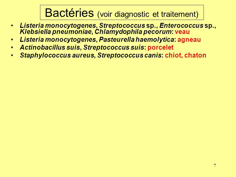 7 Bactéries (voir diagnostic et traitement) Listeria monocytogenes, Streptococcus sp., Enterococcus sp., Klebsiella pneumoniae, Chlamydophila pecorum: