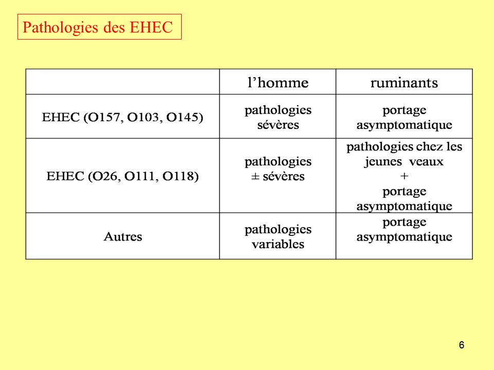 17 Virulence Séropathotype: combination de sérotype, stx subtypes, présence des facteurs de virulence et association avec maladie chez lhomme –Seropathotype A strains (VTEC O157) have a high relative incidence, commonly cause outbreaks and are associated with HUS –Seropathotype B strains (O26:H11, O103:H2/NM, O111:NM, O145:NM, O121:H19) have a moderate incidence and are uncommon in outbreaks, but were associated with HUS –Seropathotype C strains (O91, O104 and O113 all of H-type 21) are associated with HUS, but these strains were of low incidence and rarely caused outbreaks –Seropathotypes D and E are not HUS-associated and are uncommon in man or found only in non-human sources