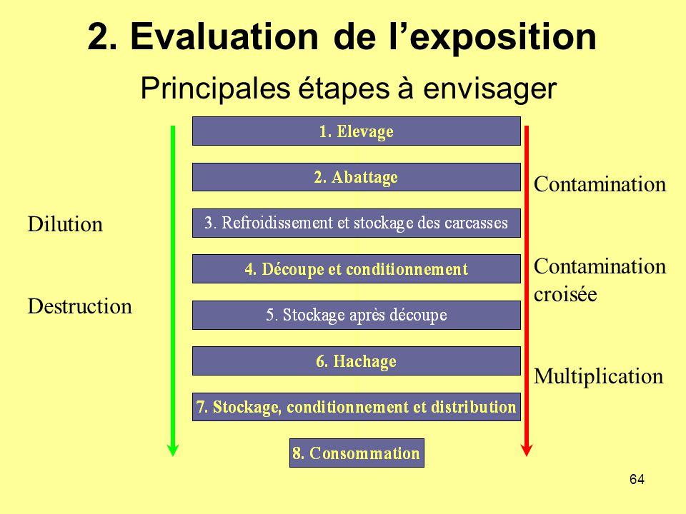 64 2. Evaluation de lexposition Principales étapes à envisager Contamination Contamination croisée Multiplication Dilution Destruction