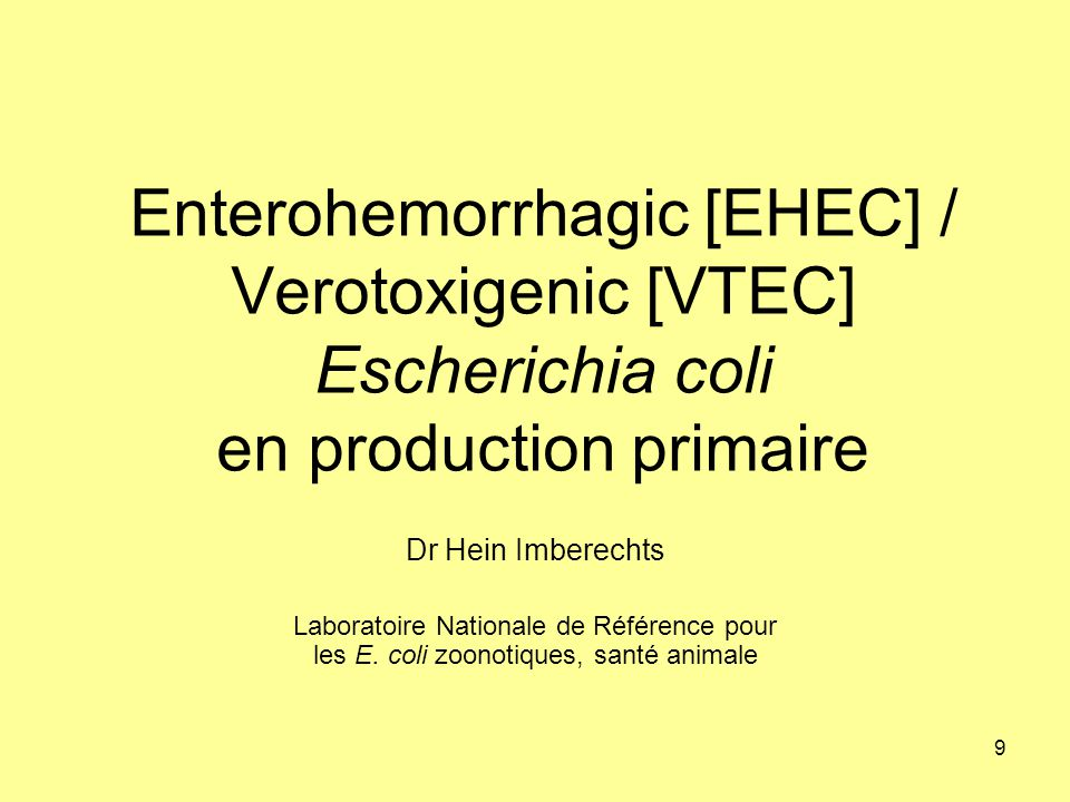 9 Enterohemorrhagic [EHEC] / Verotoxigenic [VTEC] Escherichia coli en production primaire Dr Hein Imberechts Laboratoire Nationale de Référence pour l