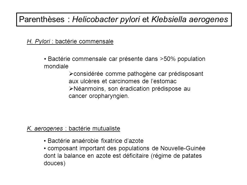 Parenthèses : Helicobacter pylori et Klebsiella aerogenes H. Pylori : bactérie commensale K. aerogenes : bactérie mutualiste Bactérie anaérobie fixatr
