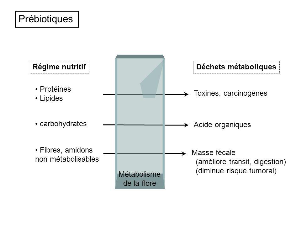 Prébiotiques Protéines Lipides carbohydrates Fibres, amidons non métabolisables Masse fécale (améliore transit, digestion) (diminue risque tumoral) Mé