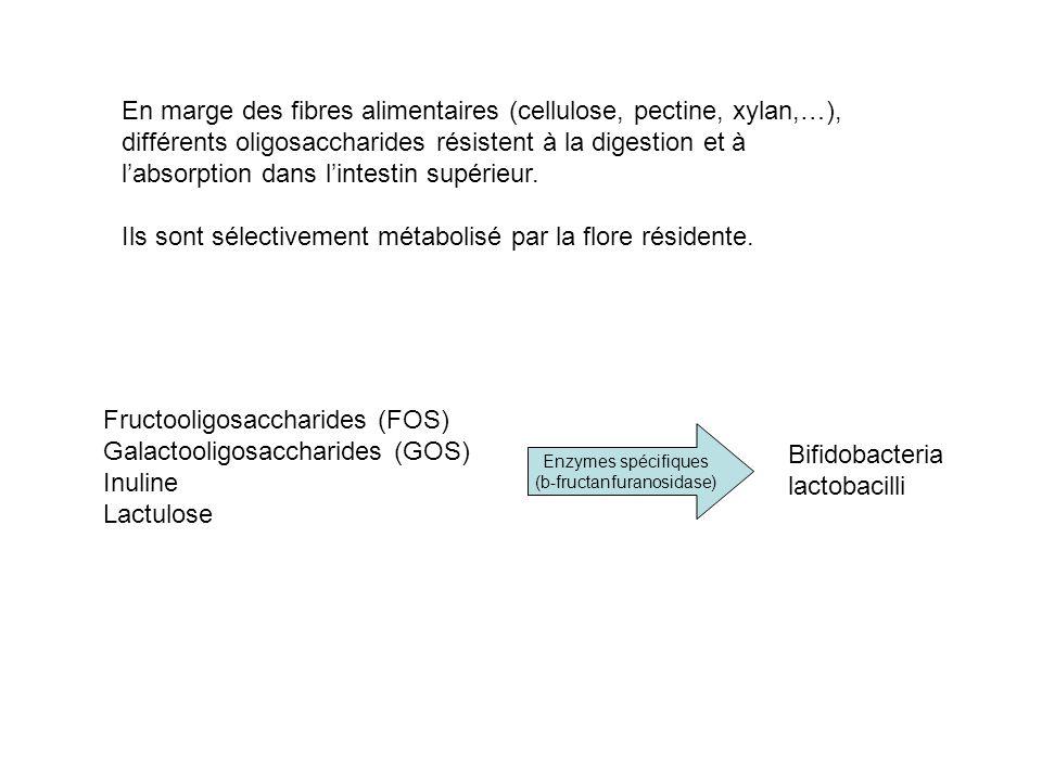 En marge des fibres alimentaires (cellulose, pectine, xylan,…), différents oligosaccharides résistent à la digestion et à labsorption dans lintestin s