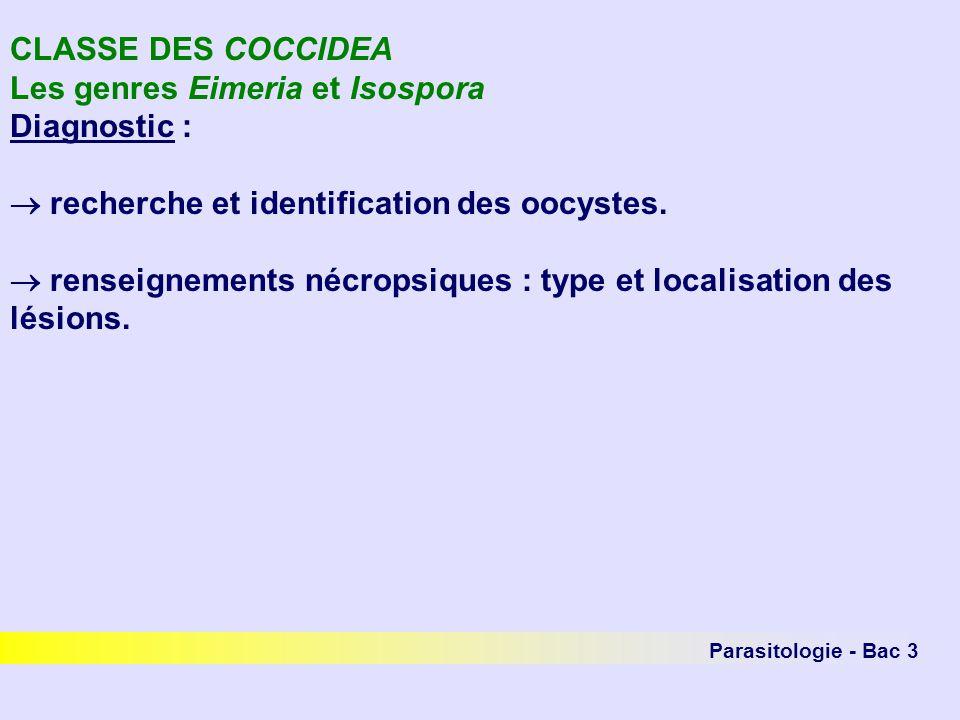 Parasitologie - Bac 3 CLASSE DES COCCIDEA Les genres Eimeria et Isospora Diagnostic : recherche et identification des oocystes. renseignements nécrops