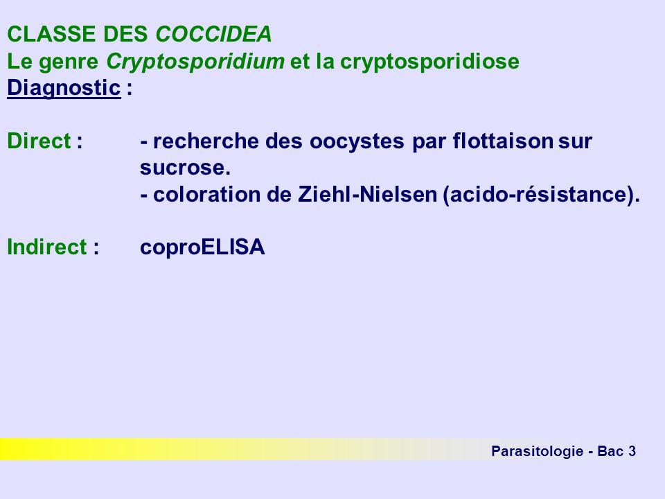 Parasitologie - Bac 3 CLASSE DES COCCIDEA Le genre Cryptosporidium et la cryptosporidiose Diagnostic : Direct :- recherche des oocystes par flottaison sur sucrose.