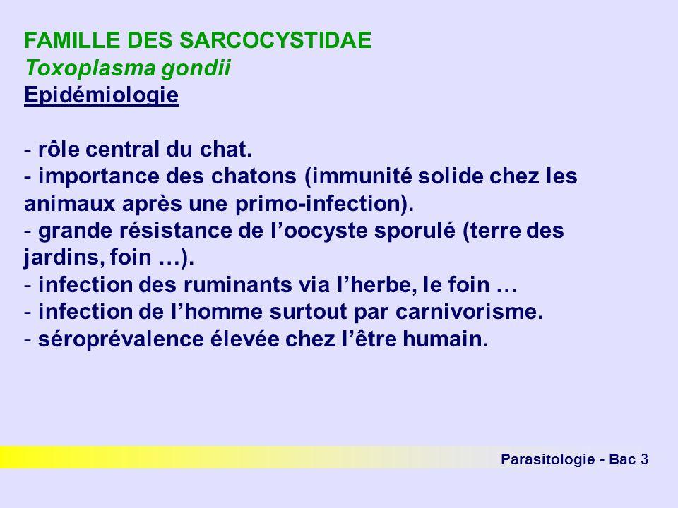 Parasitologie - Bac 3 FAMILLE DES SARCOCYSTIDAE Toxoplasma gondii Epidémiologie - rôle central du chat. - importance des chatons (immunité solide chez
