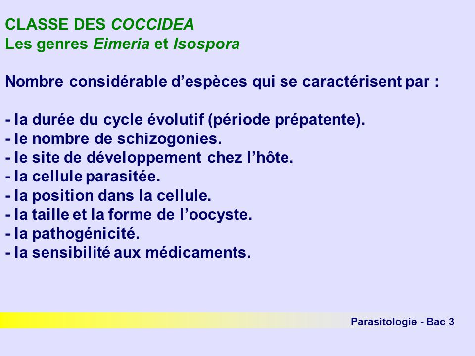 Parasitologie - Bac 3 CLASSE DES COCCIDEA Les genres Eimeria et Isospora Nombre considérable despèces qui se caractérisent par : - la durée du cycle évolutif (période prépatente).