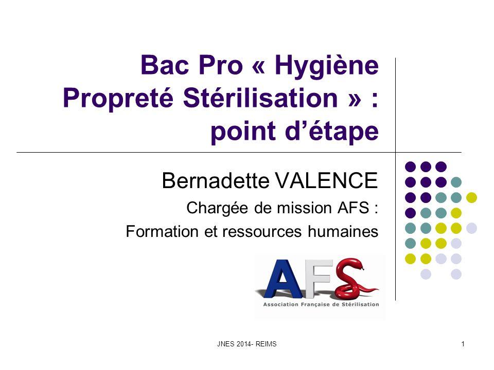 JNES 2014- REIMS1 Bac Pro « Hygiène Propreté Stérilisation » : point détape Bernadette VALENCE Chargée de mission AFS : Formation et ressources humain