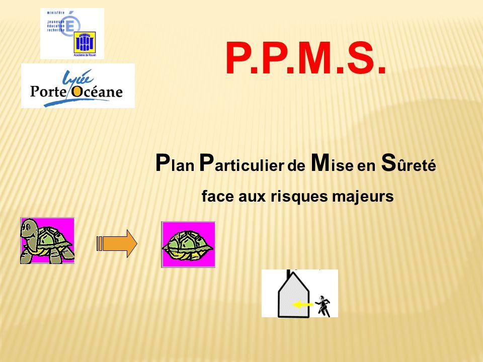P lan P articulier de M ise en S ûreté face aux risques majeurs P.P.M.S.