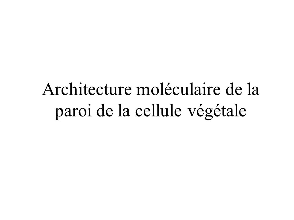 Architecture moléculaire de la paroi de la cellule végétale