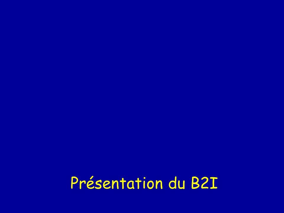 Présentation du B2I