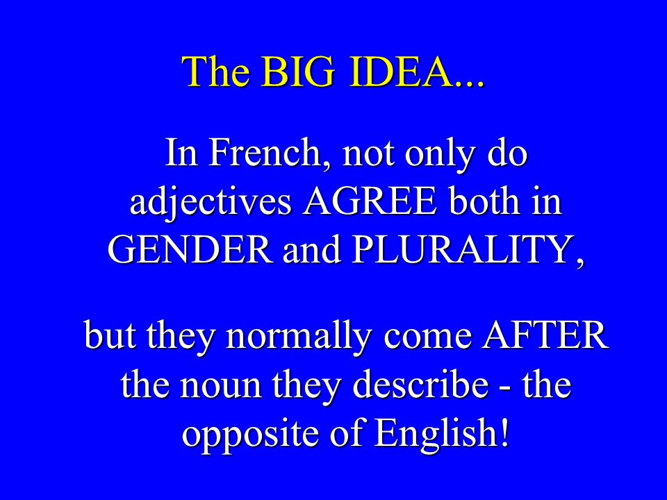 The BIG IDEA... In French, not only do adjectives AGREE both in GENDER and PLURALITY, In French, not only do adjectives AGREE both in GENDER and PLURA