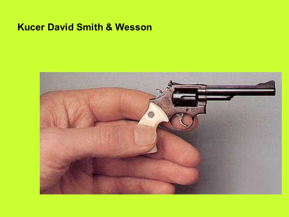 Kucer David Smith & Wesson