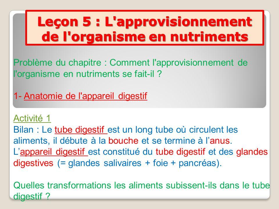Problème du chapitre : Comment l'approvisionnement de l'organisme en nutriments se fait-il ? 1- Anatomie de l'appareil digestif Activité 1 Bilan : Le