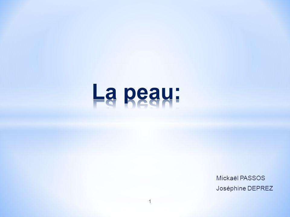 1 Mickaël PASSOS Joséphine DEPREZ