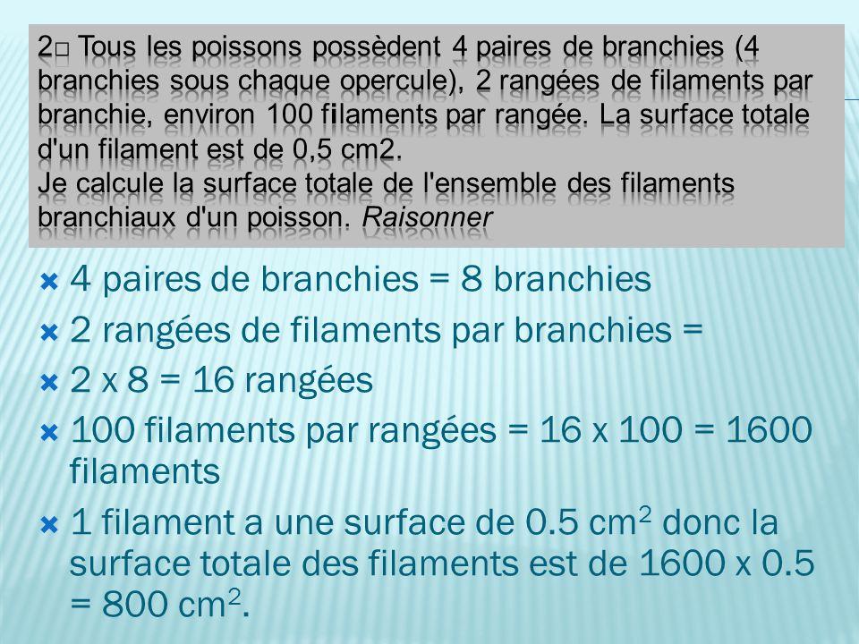4 paires de branchies = 8 branchies 2 rangées de filaments par branchies = 2 x 8 = 16 rangées 100 filaments par rangées = 16 x 100 = 1600 filaments 1 filament a une surface de 0.5 cm 2 donc la surface totale des filaments est de 1600 x 0.5 = 800 cm 2.