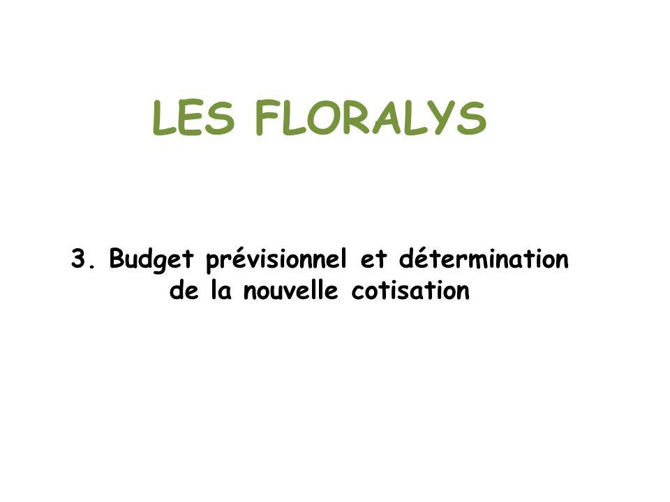 LES FLORALYS 3. Budget prévisionnel et détermination de la nouvelle cotisation
